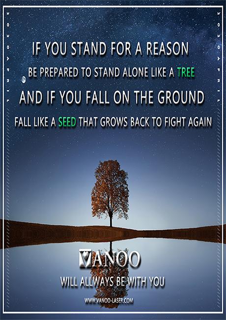 Vanoo  Array image39
